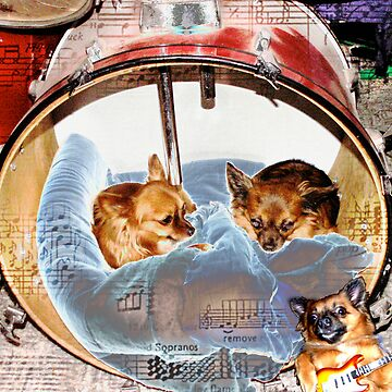 Little Drummer Dogs by Bonnie