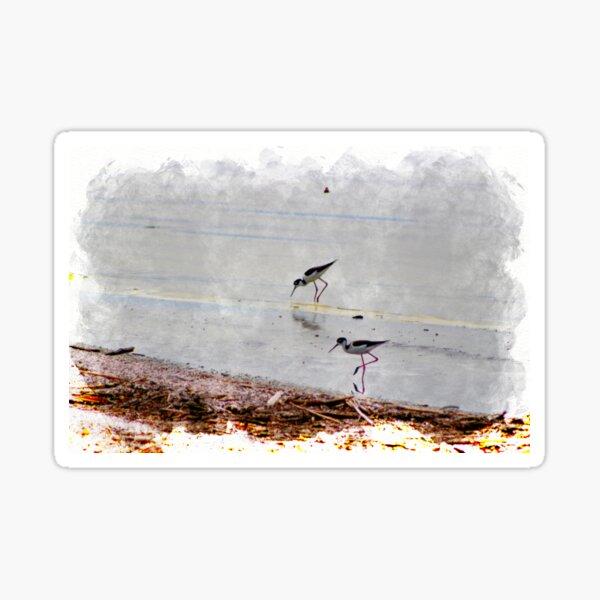 Black Neck Stilts at Salton Sea in Digital Watercolor Sticker