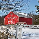 Now That's a Red Barn! by Monnie Ryan