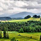 Allgäu Germany by Daidalos