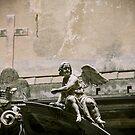 Angel  by areyarey