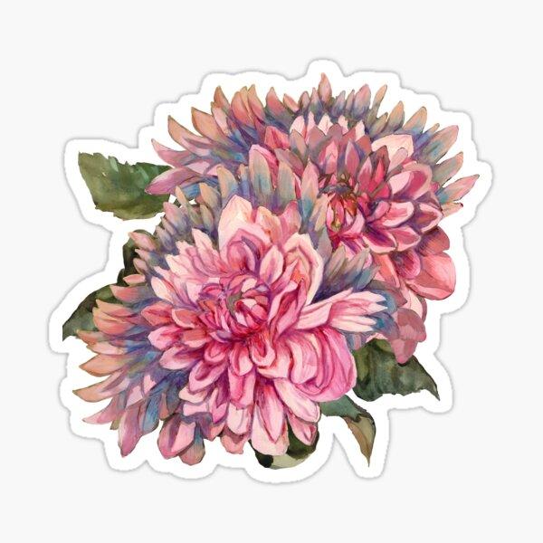 Dahlias flowers pink watercolor pattern Sticker
