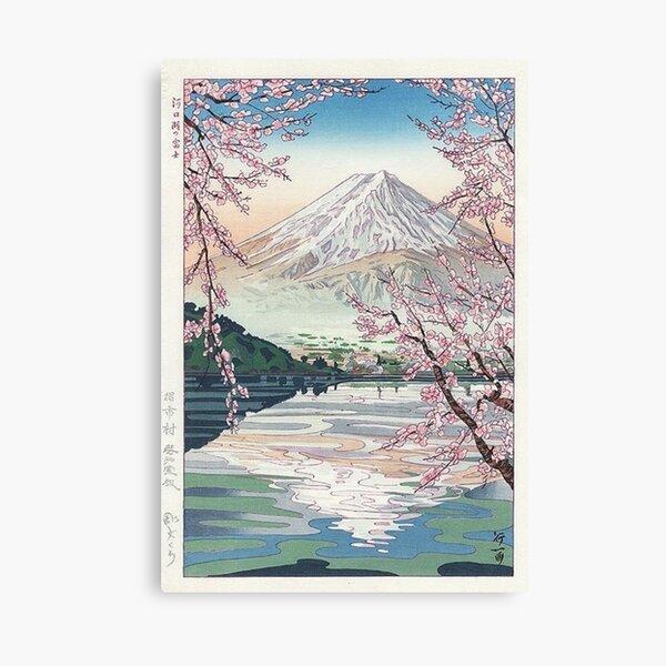 Mount Fuji Cherry Blossom Canvas Print