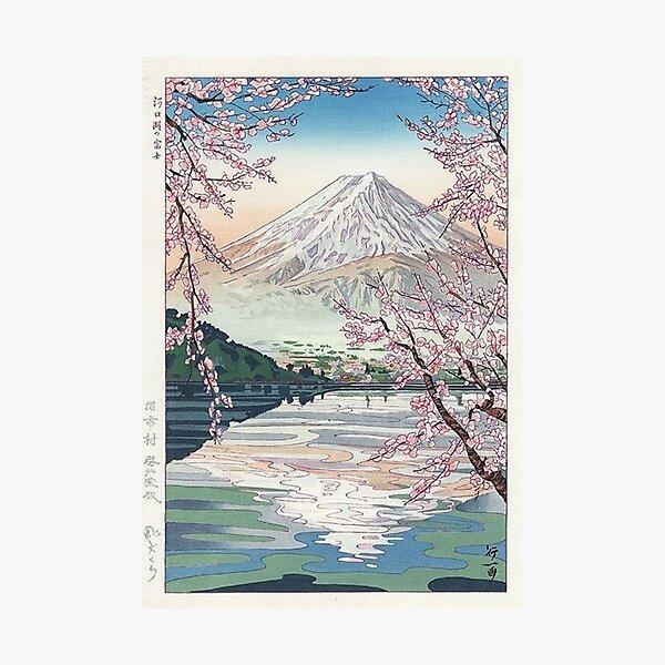 Mount Fuji Cherry Blossom Photographic Print