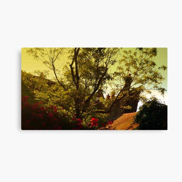 Boissy Canvas Print