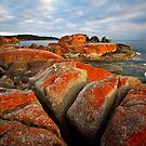 Sunrise, Bay of Fires  by Mike Calder