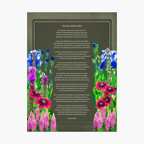 The Glory Of The Garden Photographic Print
