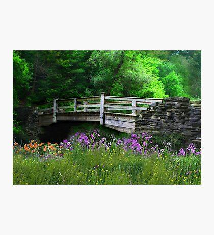 Country Bridge Photographic Print