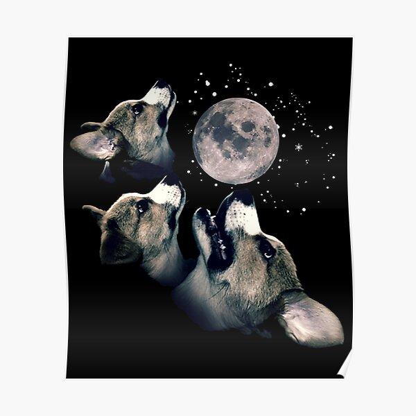 Three Corgi Moon  Poster