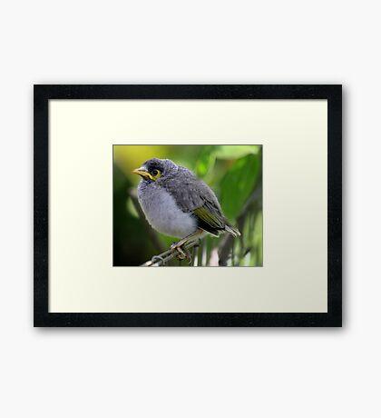 """Bird on a wire"" Framed Print"