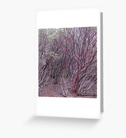 manzanita mosh-up Greeting Card