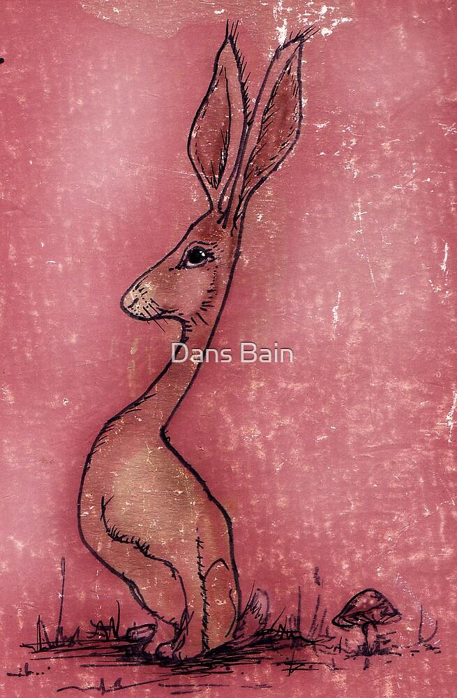 Sketchbook Rabbit by Danielle Bain