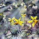 Fields of Hope by Glenn Marshall