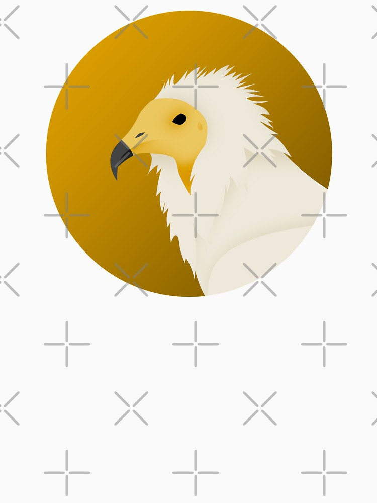 Egyptian Vulture by DeguArts