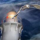 fingal lighthouse by carol brandt
