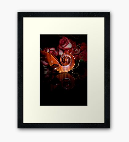 after dark © 2010 patricia vannucci  Framed Print
