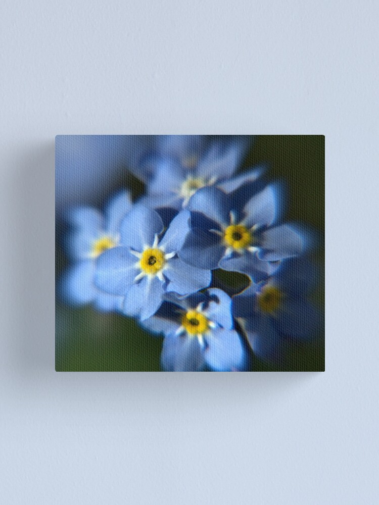 Alternate view of Forget-Me-Not Canvas Print