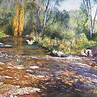 'Rocks & Ripples' - Jamieson River by Lynda Robinson