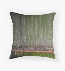 Sakuragaoka no take Throw Pillow