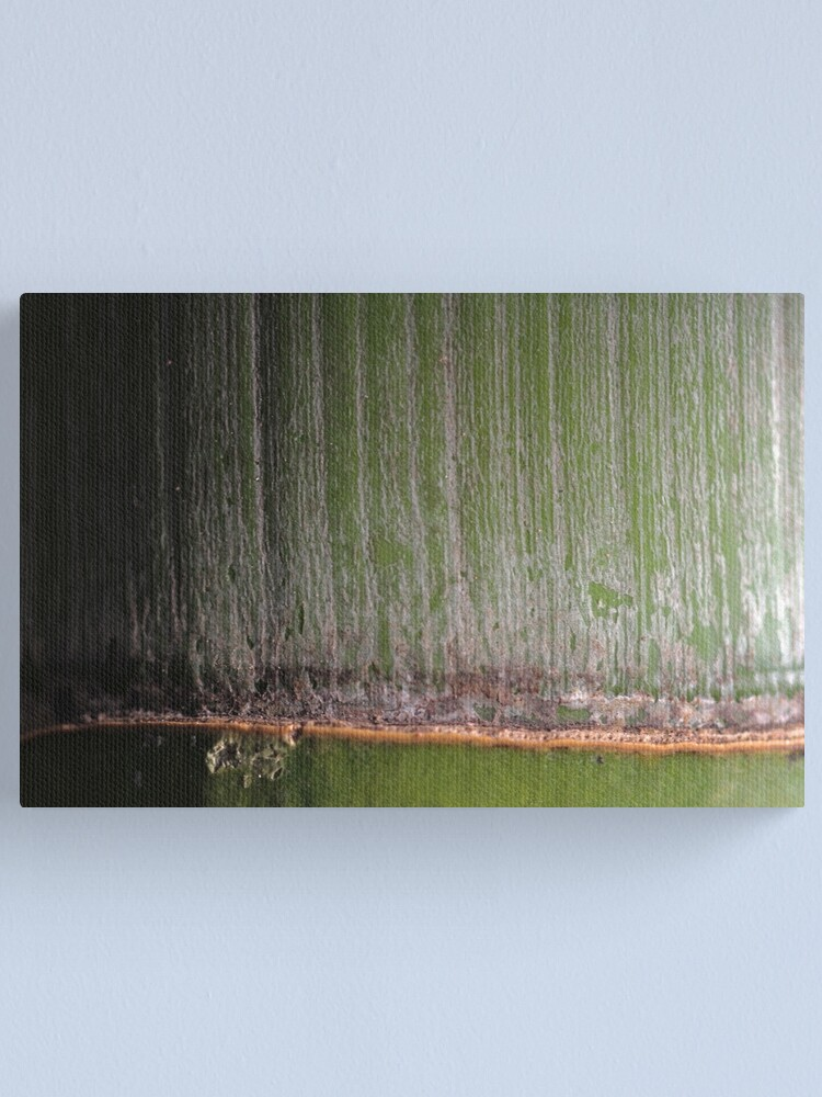Alternate view of Sakuragaoka no take Canvas Print