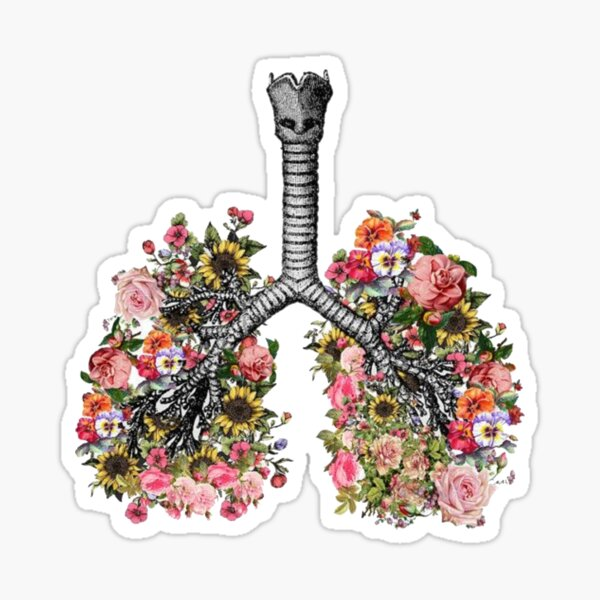 lungs flowers tumblr cf five feet apart Sticker