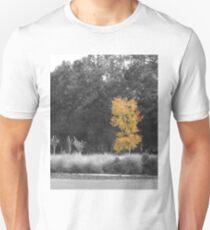 Tree at Sholom Park T-Shirt