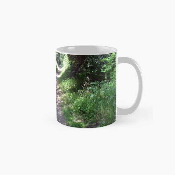 Forest path,Moonwater Classic Mug