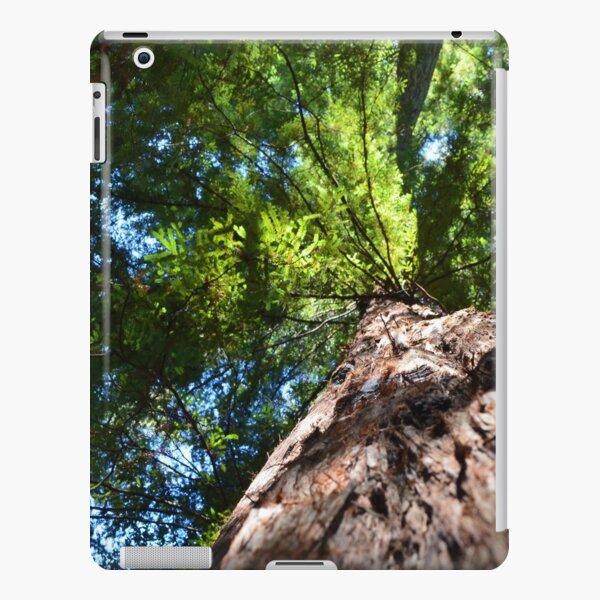 Redwood iPad Snap Case