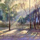 'Wickham Light'  by Lynda Robinson