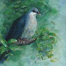Pigeon by TallabeenaArt