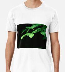 Plant, Common Hazel, leaves Premium T-Shirt