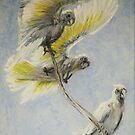 Sulphur-crested cockatoos (Cacatua galerita) by TallabeenaArt