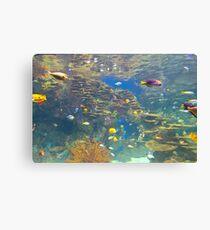 Tropical hidden aqua world Canvas Print
