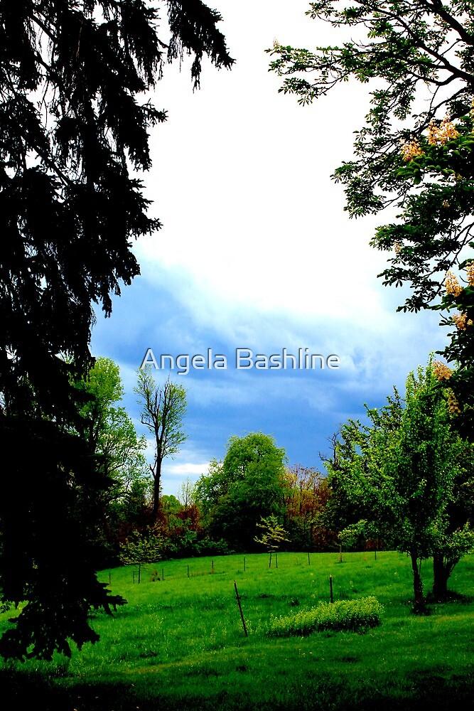 The Grass is Always Greener by Angela Bashline