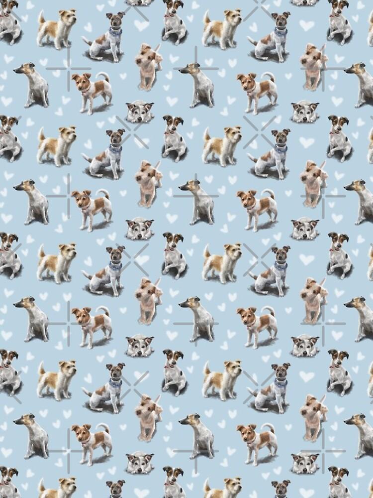 Jack Russell Terrier by elspethrose