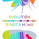 Drosophila Hox Genes - Evolution is not a Ho(a)x by the vexed  muddler