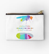 Drosophila Hox Genes - Evolution is not a Ho(a)x Zipper Pouch