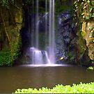 Waterfall Burgers Zoo by Janone