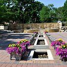 Alumni Plaza by Corkle
