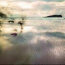 New Dawn by Kym Howard