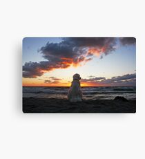 Ditte - the sunset dog Canvas Print