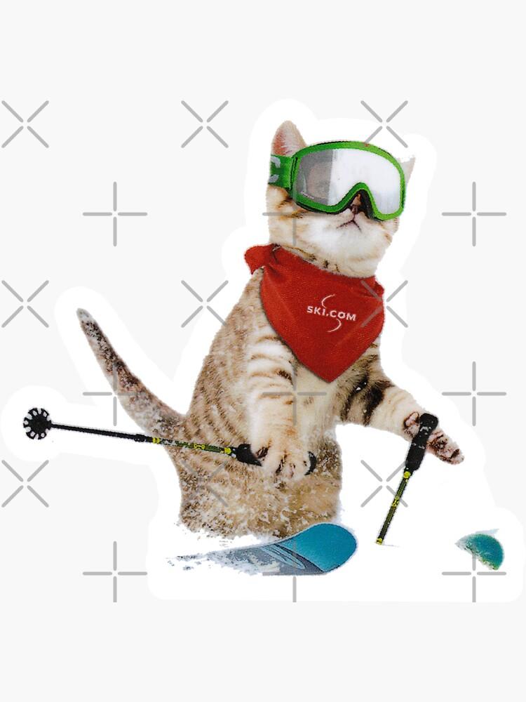 Cat Skiing Ski Kitten Skier Cute Funny  by letourneau41