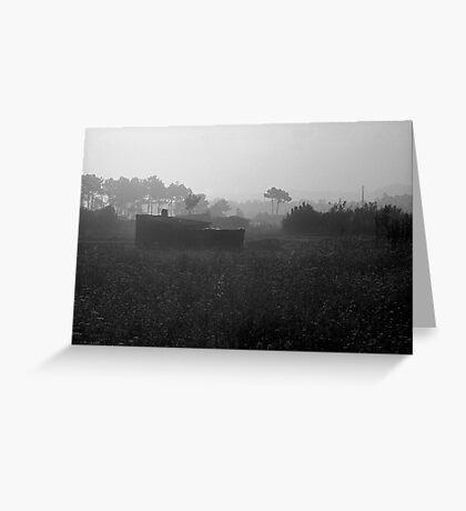 Morning Mist  Greeting Card