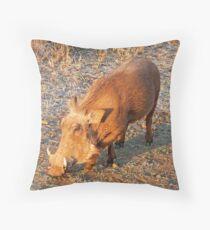 Warthog, Kruger National Park, South Africa Throw Pillow