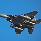 F-15 Strike Eagle, belly shot by Henry Plumley