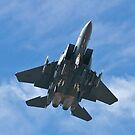 F-15 Strike Eagle overhead by Henry Plumley