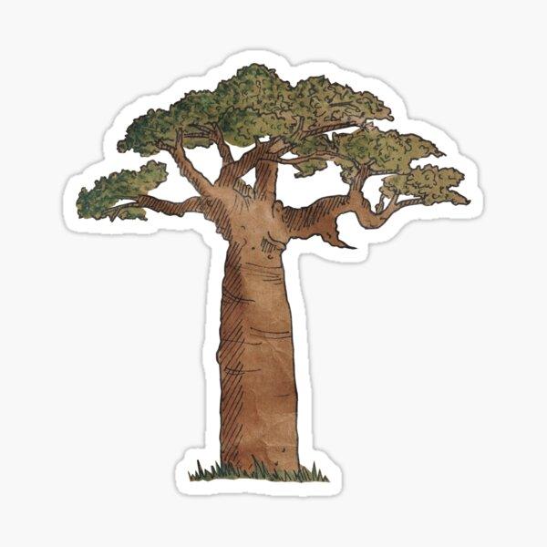Baobab  Sticker