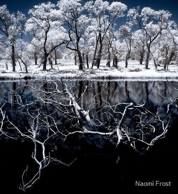 Nirvana by Naomi Frost