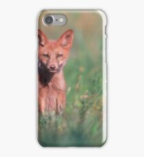 Juvenile Red Fox iPhone Case/Skin
