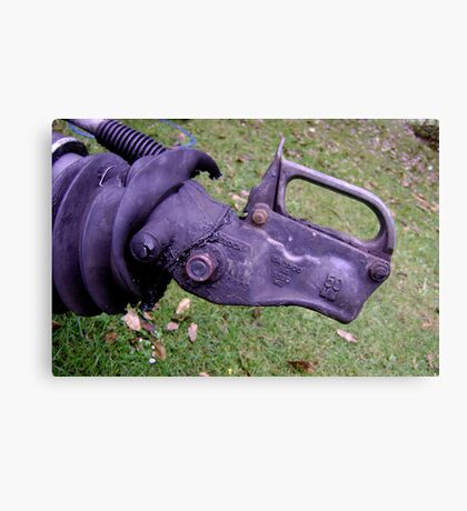 Rhino, Needs Friends - trailer hitch Canvas Print